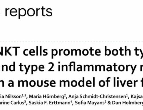 New publication on the liver phenotype of the NIF mouse